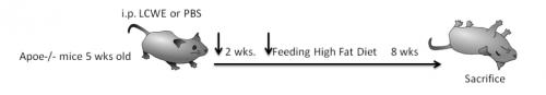 Bio1_Passage5_Figure1